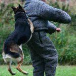 Задержание с прыжком в спину