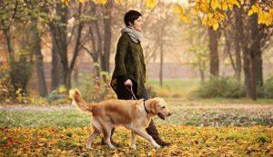 Женщина с собакой.