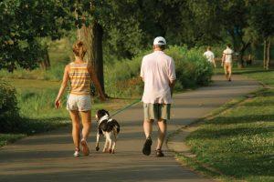 Прогулка с собакой в парке.
