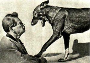 В.Л.Дуров проводит внушение собаке.