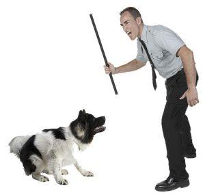 Наказание собаки.