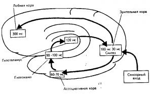 Схема информационного синтеза.
