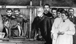 Павлов в лаборатории.